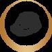 pinui-icon